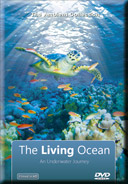 The Living Ocean DVD image