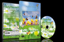 Butterflies and Flowers DVD