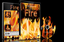 Fire Videos Cozy Fireplace and Campfires and Flames