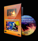 Fireplace and Tropical Aquarium DVD