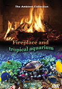 Fireplace and Tropical Aquarium 2016