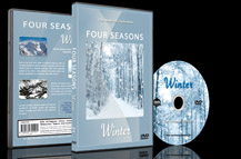Scenic Winter Landscapes Scenery with Snow and Frozen Waterfalls