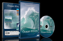 Ocean Waves DVD