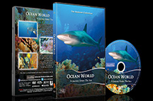 DVD Video, All Regions, Widescreen, Dolby Stereo, Duration - 60 minutesDVD Video, All Regions, Widescreen, Dolby Stereo, Duration - 60 minutes