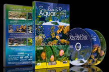 Sea Lakes and River Aquariums