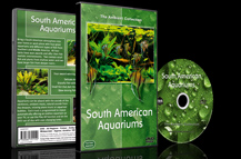 Aquariums from Amazon Rivers and Lakes with Freshwater Fishes