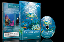 The Living Ocean DVD