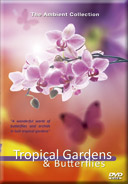 Butterflies DVD - Tropical Gardens